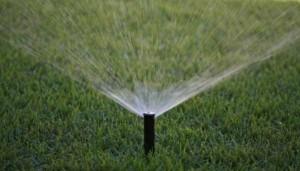 irrigazione00