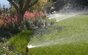 irrigazione11